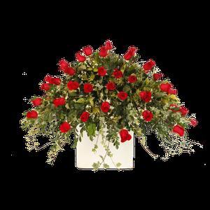 Lagrima Feretro Rojo