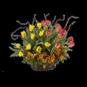 Doblemente Tulipanes