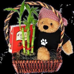 Combo oso Bambu