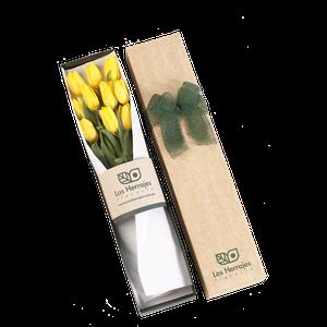 Caja Tulipanes X 10