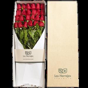 Caja Rosas X 24