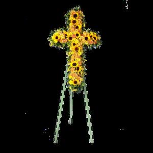 Cruz Girasoles