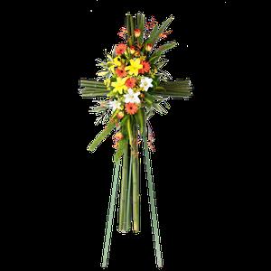 Cruz Bambu