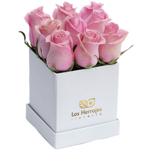 Tiffany Ivory Box S Rosado