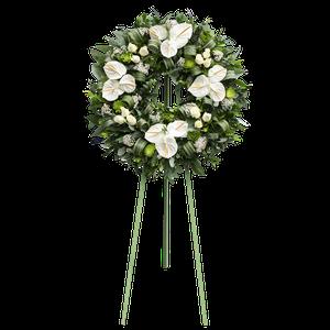 Corona Anthurios Blancos