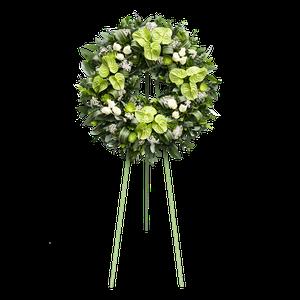 Corona Anthurios Verdes