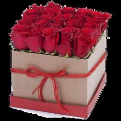 Tiffany Red Box x 25