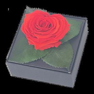Rosa Preservada Corazon