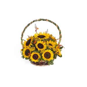 Canasta Girasoles