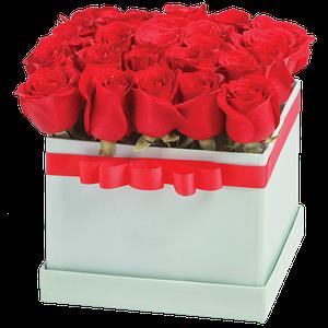 Tiffany x25 Rojo