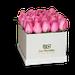 Tiffany x25 rosado
