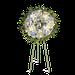 Corona Redonda Celeste
