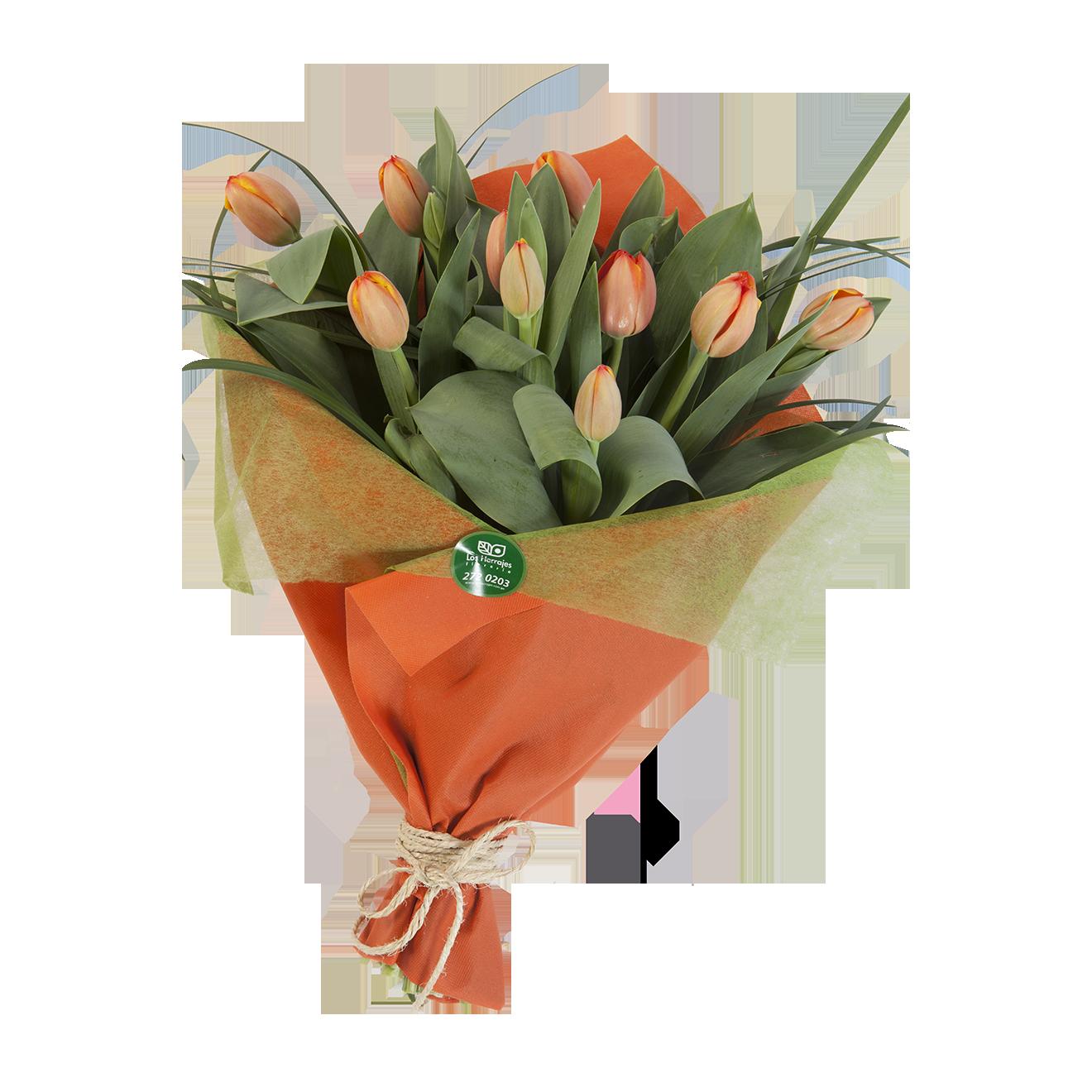 Ramo Tulipanes x 10