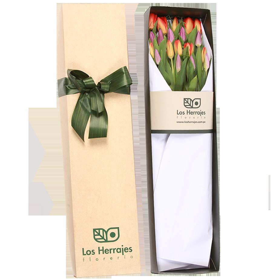 Caja Tulipanes X 20