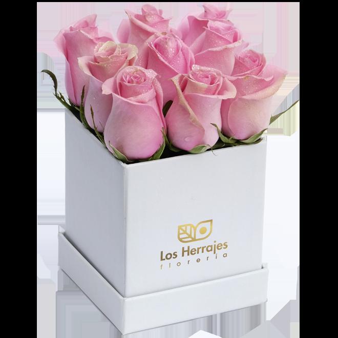 Tiffany Ivory Box S Rosado