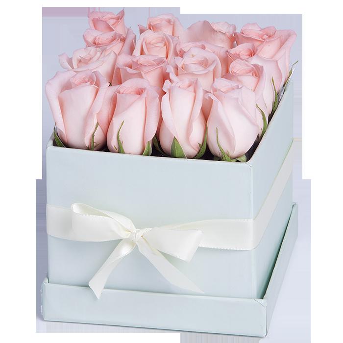 Tiffany x16 Rosa