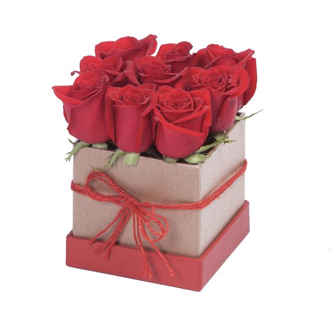 Tiffany Red Box x9